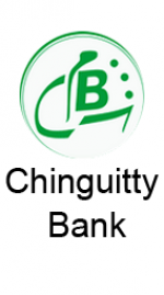 Chinguitty